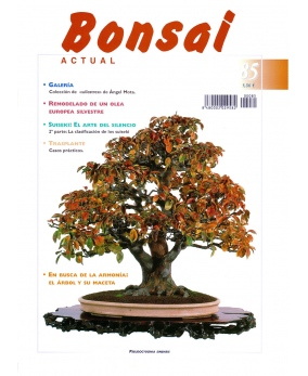 Bonsai Actual Nº 85