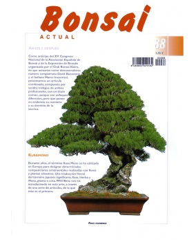 Bonsai Actual Nº 88