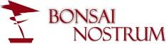 Bonsai Nostrum