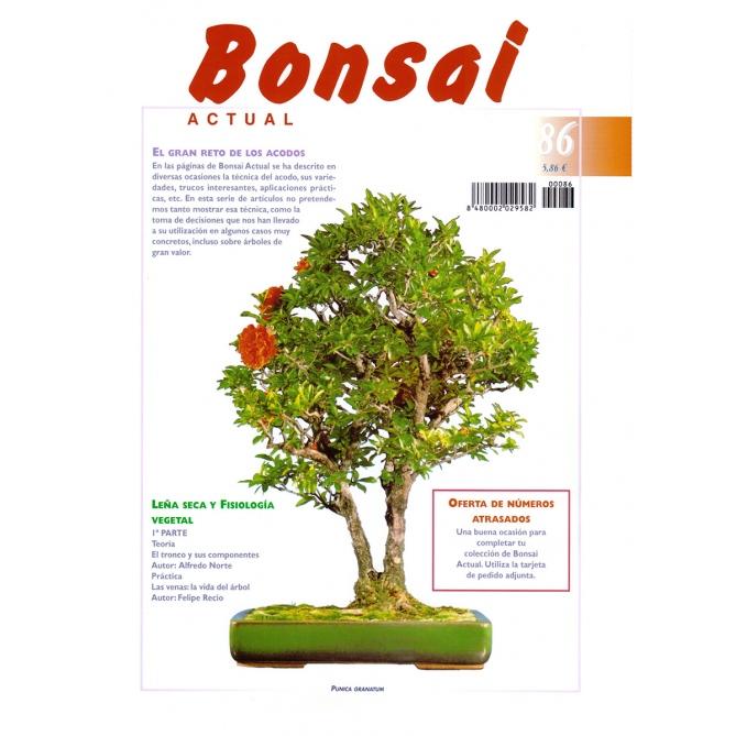 Bonsai Actual Nº 86
