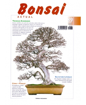 Bonsai Actual Nº 89
