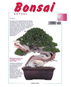 Bonsai Actual Nº 90