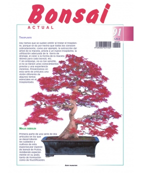 Bonsai Actual Nº 91