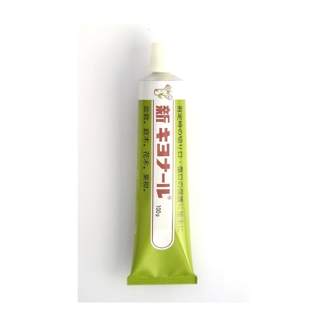 Cicatrizante Shin-Kiyonal 100 g